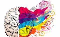 Cerebro Memoria Creatividad